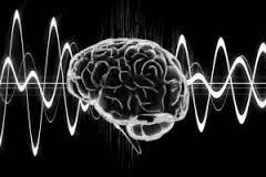 cerebro electr