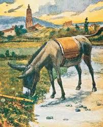 Goethe AEP.4 burroflautista
