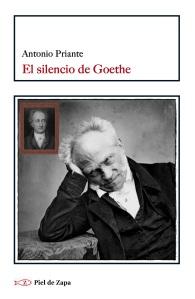 EL silencio de Goethe copia